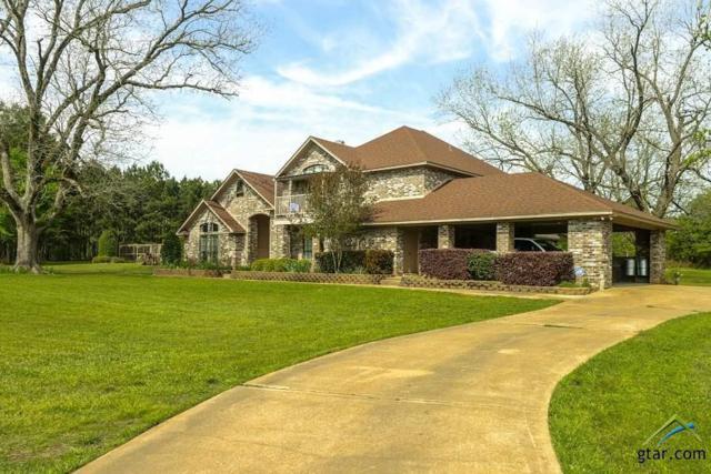 723 Newton Road, Marshall, TX 75672 (MLS #10093338) :: RE/MAX Professionals - The Burks Team