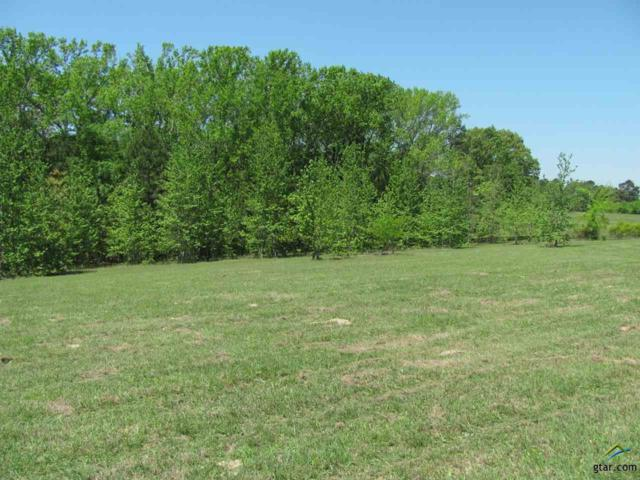 TBD Cr 442, Lindale, TX 75771 (MLS #10093364) :: RE/MAX Impact