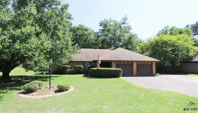 11541 Pecanridge, Tyler, TX 75703 (MLS #10093374) :: RE/MAX Professionals - The Burks Team