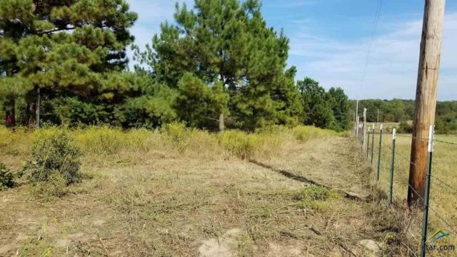 TBD F.M. 882 County Road 3703, Bullard, TX 75757 (MLS #10093422) :: RE/MAX Impact
