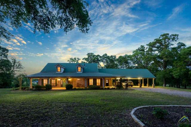 16338 County Road 46, Tyler, TX 75704 (MLS #10093506) :: The Wampler Wolf Team