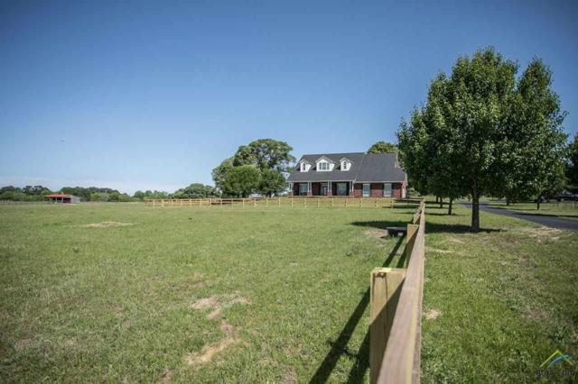 15176 County Road 472, Tyler, TX 75706 (MLS #10093517) :: The Wampler Wolf Team