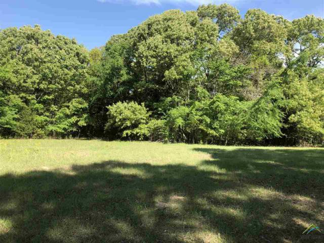 TBD Cr 4141, Lindale, TX 75771 (MLS #10093606) :: The Wampler Wolf Team