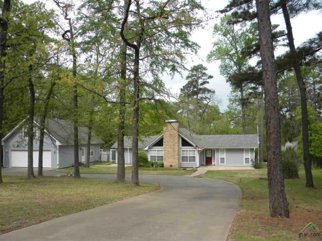 187 Clearwater Trail, Holly Lake Ranch, TX 75765 (MLS #10093690) :: RE/MAX Impact