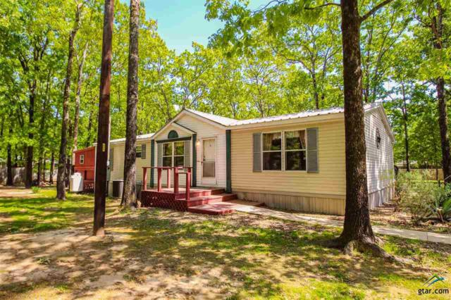 124 Cr 1556, Alba, TX 75410 (MLS #10093723) :: The Wampler Wolf Team