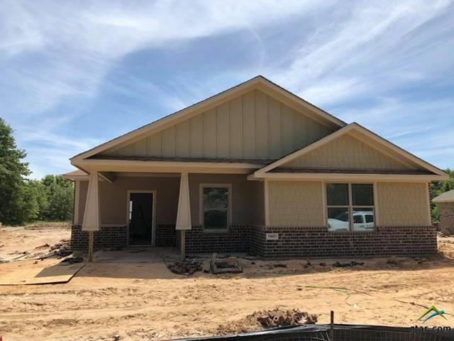 13857 County Road 4200, Lindale, TX 75771 (MLS #10093750) :: The Wampler Wolf Team