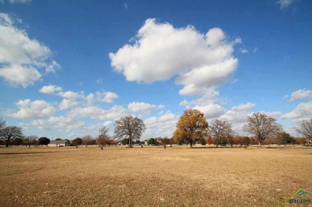 Lot 42 Pr 5940, Emory, TX 75440 (MLS #10093908) :: RE/MAX Professionals - The Burks Team