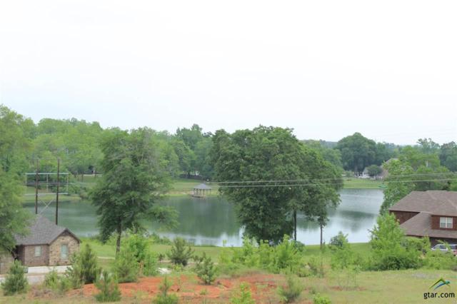 127 Lake Lou Ella, Bullard, TX 75757 (MLS #10094346) :: RE/MAX Professionals - The Burks Team