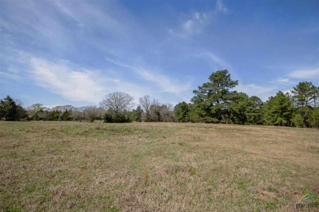 12409 State Highway 135 N, Troup, TX 75789 (MLS #10094392) :: RE/MAX Professionals - The Burks Team