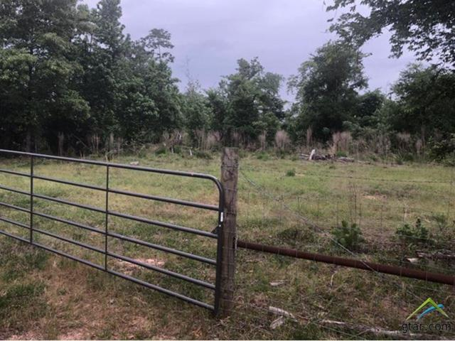 58 Acres Cr 3305, Jacksonville, TX 75766 (MLS #10094399) :: RE/MAX Impact