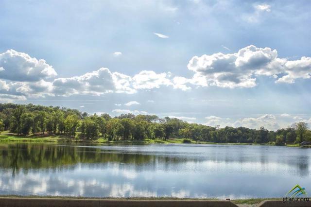 117 Lake Lou Ella, Bullard, TX 75757 (MLS #10094731) :: RE/MAX Professionals - The Burks Team