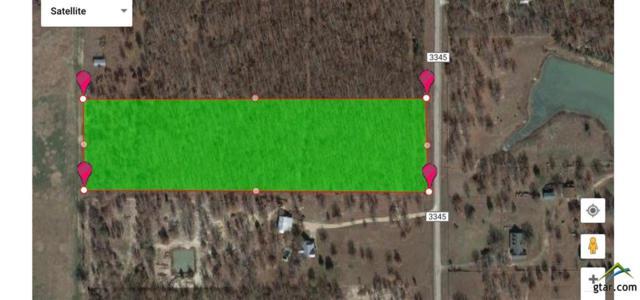 TBD Cr 3345, Emory, TX 75440 (MLS #10094735) :: RE/MAX Impact