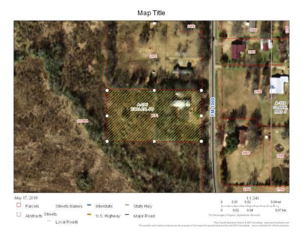 000 Fm 1000, Cookville, TX 75558 (MLS #10094949) :: RE/MAX Impact