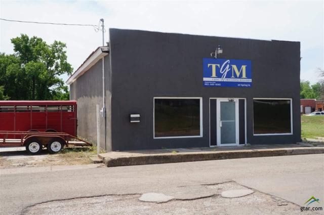 317 Spring Street, Sulphur Springs, TX 75482 (MLS #10095017) :: RE/MAX Professionals - The Burks Team