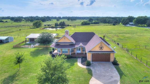 3995 Vz County Road 2144, Wills Point, TX 75169 (MLS #10095062) :: RE/MAX Professionals - The Burks Team