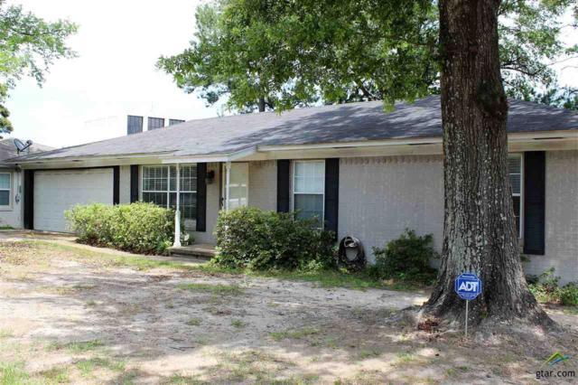 3038 Santa Elena Drive, Tyler, TX 75701 (MLS #10095152) :: RE/MAX Professionals - The Burks Team
