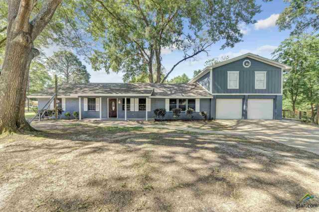 1402 Woodland Hills, Tyler, TX 75701 (MLS #10095169) :: RE/MAX Professionals - The Burks Team