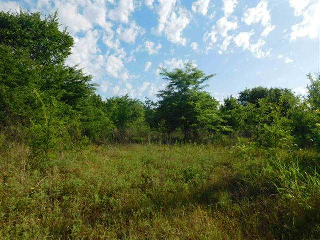 TBD County Road 1525, Point, TX 75472 (MLS #10095359) :: RE/MAX Professionals - The Burks Team