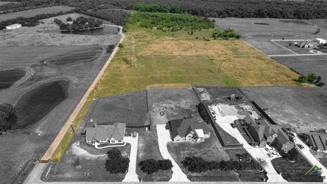 TBD Stanley Ln, Forney, TX 75126 (MLS #10096039) :: The Wampler Wolf Team