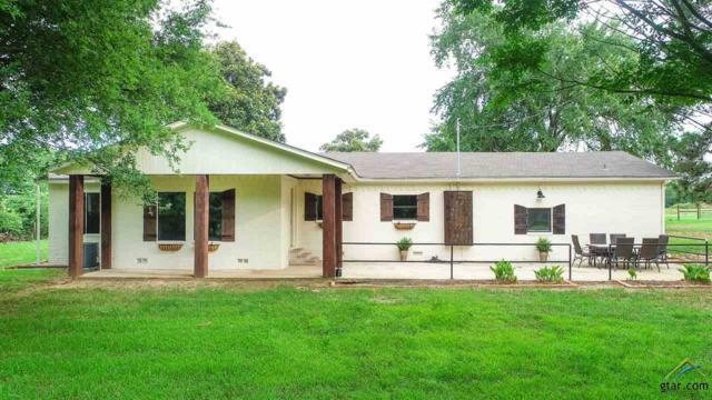 315 & 359 County Road 1450, Mt Pleasant, TX 75455 (MLS #10096057) :: RE/MAX Professionals - The Burks Team