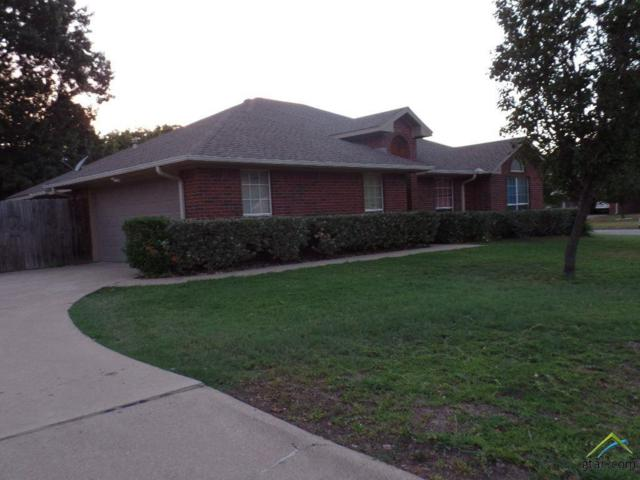 314 Amanda Court, Whitehouse, TX 75791 (MLS #10096147) :: RE/MAX Professionals - The Burks Team