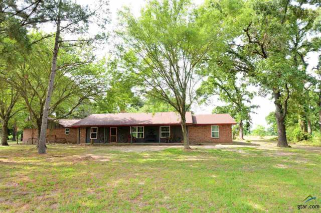 461 Vz County Road 4408, Ben Wheeler, TX 75754 (MLS #10096191) :: RE/MAX Professionals - The Burks Team