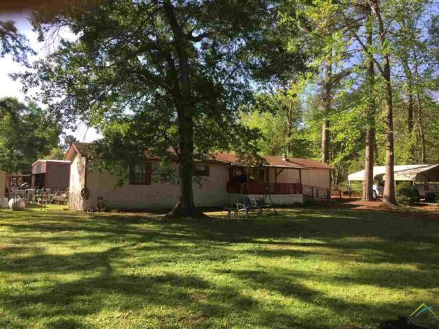 18824 Cr 1293, Tyler, TX 75703 (MLS #10096255) :: The Wampler Wolf Team