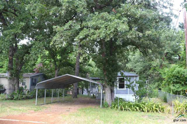 23197 Wateridge Loop, Flint, TX 75762 (MLS #10096347) :: RE/MAX Professionals - The Burks Team
