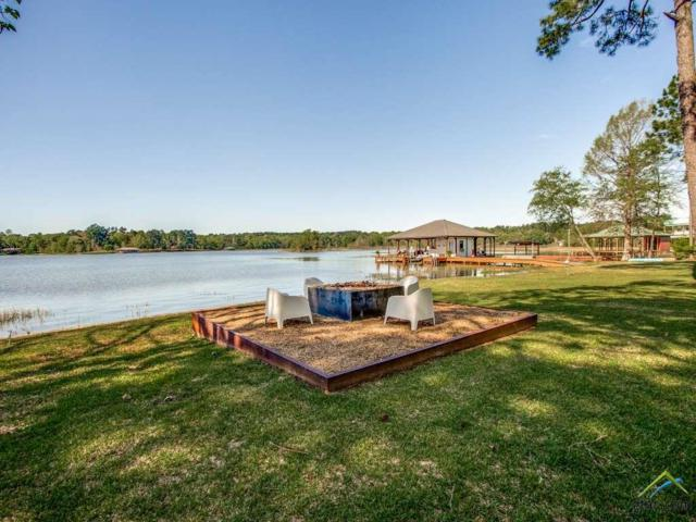 15994 Mcelroy Road, Whitehouse, TX 75791 (MLS #10096362) :: The Wampler Wolf Team