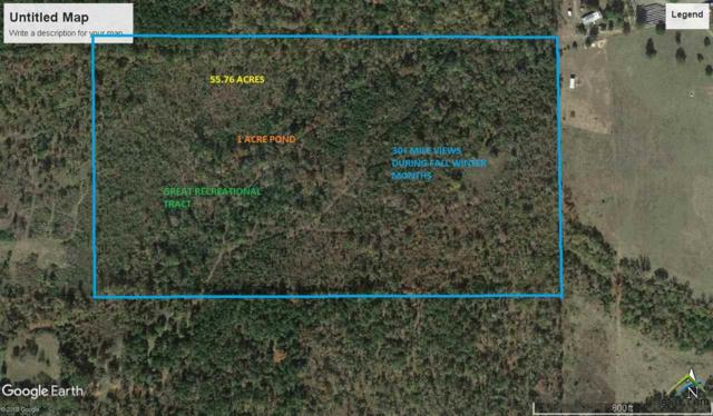 TBD Cr 1717, Rusk, TX 75785 (MLS #10096401) :: The Wampler Wolf Team