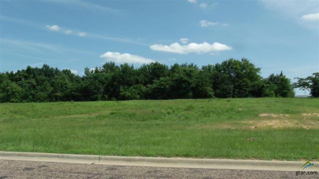 Lot 3R-1 W 19th Street, Mt Pleasant, TX 75455 (MLS #10096449) :: The Wampler Wolf Team