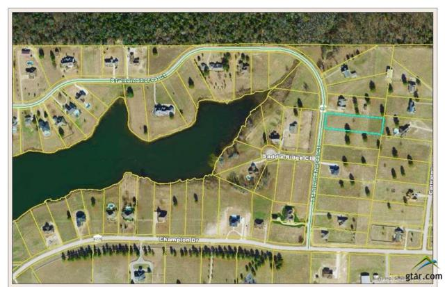16350 Stallion Shores Court (Stallion Lake Ranch), Lindale, TX 75771 (MLS #10096486) :: The Wampler Wolf Team
