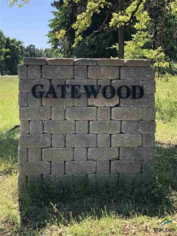 Lot 24 Gatewood Estates, Troup, TX 75789 (MLS #10096713) :: RE/MAX Professionals - The Burks Team