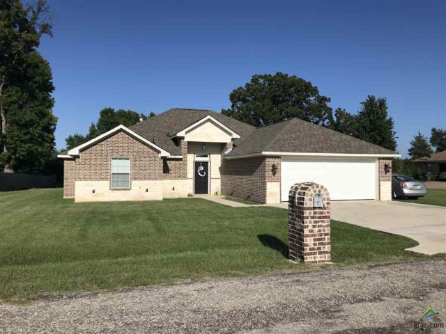 170 County Road 3101, Pittsburg, TX 75686 (MLS #10096861) :: RE/MAX Professionals - The Burks Team