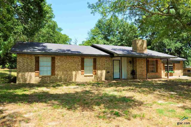 17603 Kristopher Circle, Whitehouse, TX 75791 (MLS #10096882) :: RE/MAX Professionals - The Burks Team