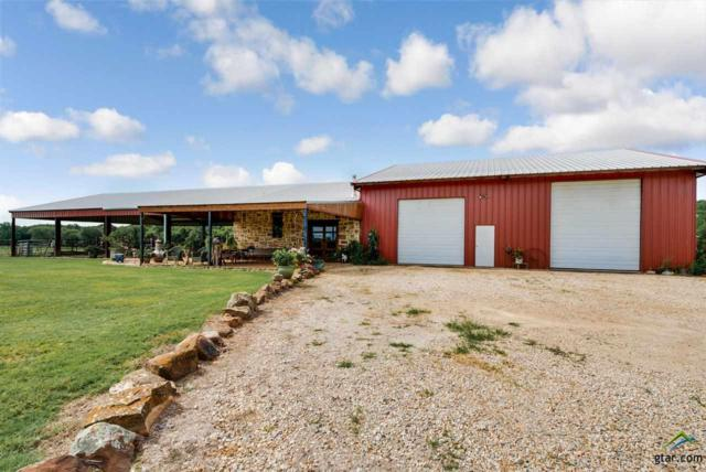 570 Rs County Road 3346, Emory, TX 75440 (MLS #10096924) :: The Wampler Wolf Team