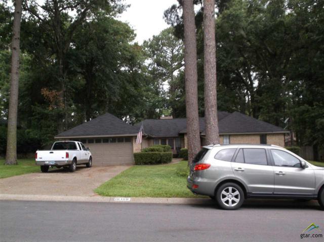 18108 Silver Leaf, Flint, TX 75762 (MLS #10097088) :: RE/MAX Impact