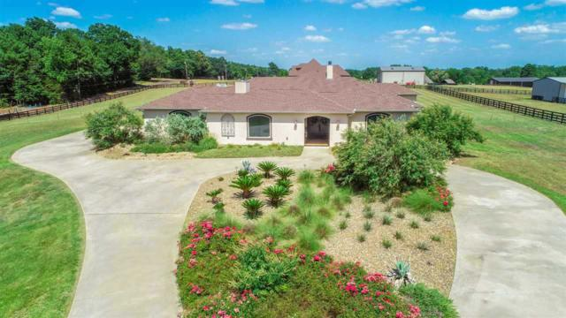 161 Wiley Page Rd, Longview, TX 75605 (MLS #10097181) :: RE/MAX Professionals - The Burks Team
