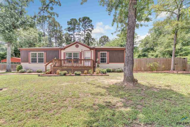 131 Abbey Lane, Bullard, TX 75757 (MLS #10097284) :: RE/MAX Impact