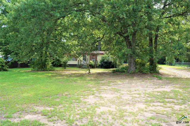 19476 Cr 2176, Whitehouse, TX 75791 (MLS #10097534) :: The Wampler Wolf Team