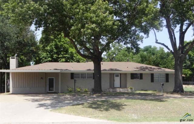 505 E Coke Road, Winnsboro, TX 75494 (MLS #10097603) :: The Wampler Wolf Team