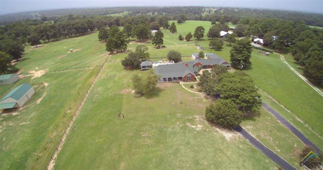 3245 Farm To Market Road 2137, Bullard, TX 75757 (MLS #10097611) :: The Wampler Wolf Team