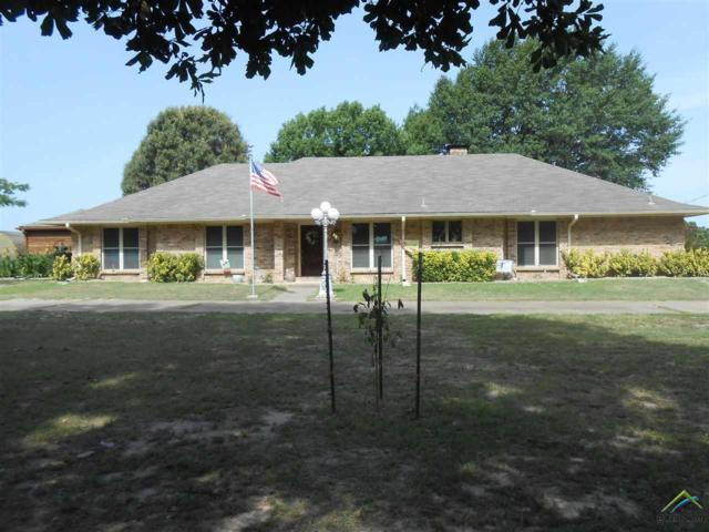 1347 Cr 4510, Pittsburg, TX 75686 (MLS #10097641) :: The Wampler Wolf Team