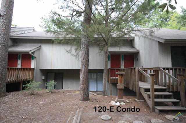 120-E Holly Hill Circle, Holly Lake Ranch, TX 75765 (MLS #10097945) :: RE/MAX Professionals - The Burks Team