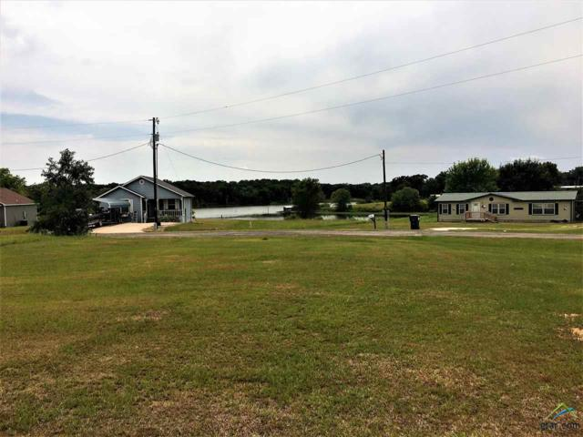 000 Waterfront Row, Quitman, TX 75783 (MLS #10098008) :: The Wampler Wolf Team