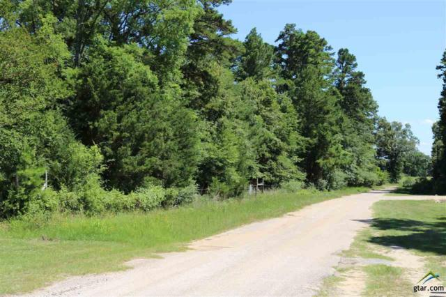 295 Kyle Wilson Road, Longview, TX 75602 (MLS #10098011) :: RE/MAX Impact