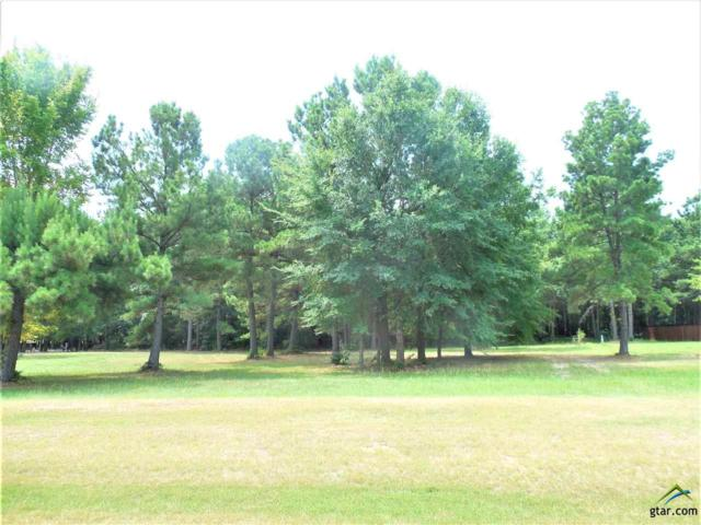 24441 Stallion Park Place (Stallion Lake Ranch), Lindale, TX 75771 (MLS #10098036) :: The Wampler Wolf Team