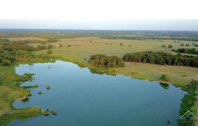 0000 County Road 1131, Cumby, TX 75433 (MLS #10098127) :: The Wampler Wolf Team