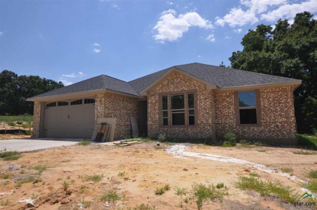 14664 Gracie Ln, Brownsboro, TX 75756 (MLS #10098274) :: RE/MAX Impact