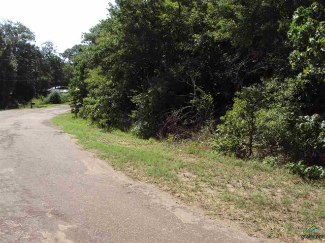 tbd Dogwood Trail, Murchison, TX 75778 (MLS #10098279) :: The Wampler Wolf Team